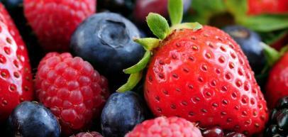 Hentet fra:http://www.hjeltnes.vgs.no/2013-kompetanseheving-frukt-og-baer